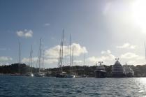 Doborowe towarzystwo na Antigua.JPG (małe)